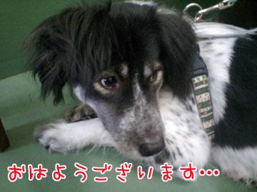 20080912-01.jpg