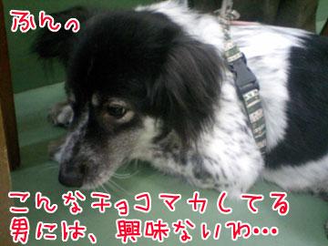 20080912-03.jpg