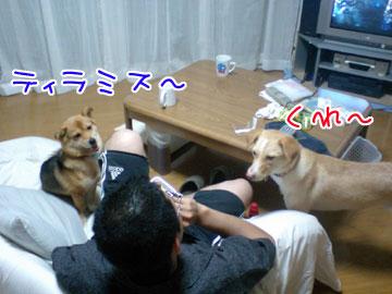 20080916-07.jpg