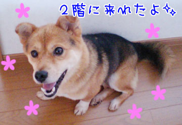 20080918-01.jpg
