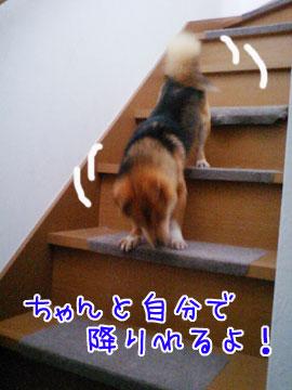 20080918-02.jpg