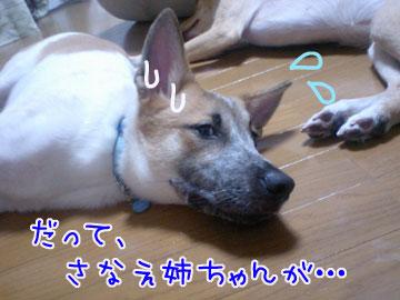 20081001-04.jpg