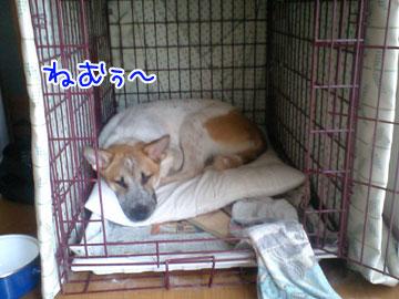 20081013-01.jpg
