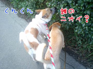 20081020-09.jpg