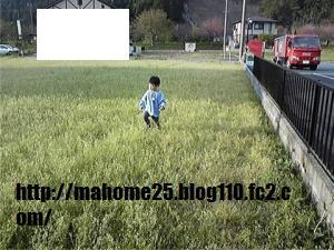 GetAttachment1_convert_20090417122443.jpg