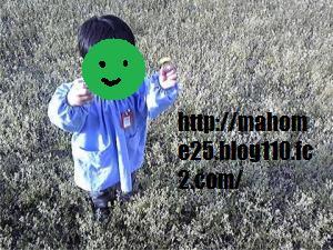 GetAttachment2_convert_20090417122534.jpg