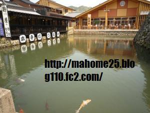 P1000941_convert_20090420095754.jpg