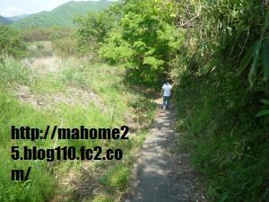 P1010031_convert_20090507131822.jpg