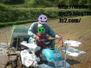 P1010051_convert_20090511161405.jpg