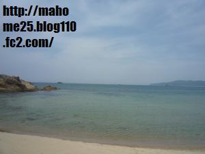 P1010067_convert_20090512210823.jpg