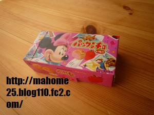 P1010069_convert_20090512133919.jpg