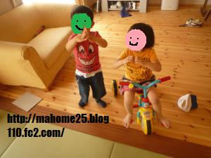 P1010871_convert_20090520155725.jpg
