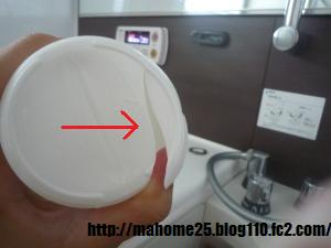 P1020033_convert_20090630113745.jpg
