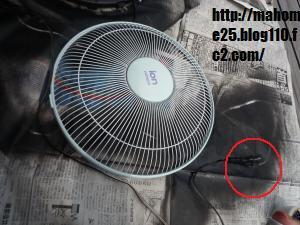 P1020075_convert_20090704002707.jpg