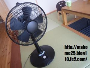 P1020090_convert_20090706111111.jpg