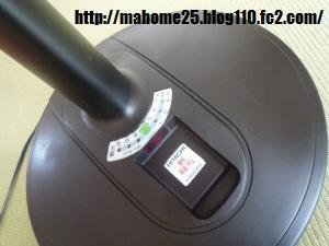P1020091_convert_20090706111249.jpg