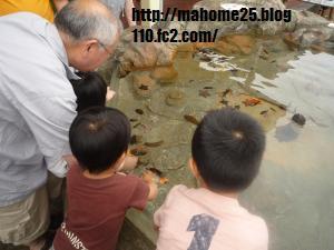 P1020124_convert_20090723194139.jpg