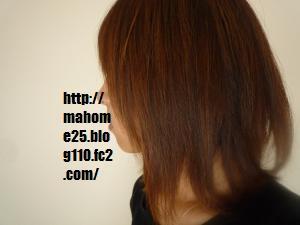 P1020164_convert_20090724152919.jpg