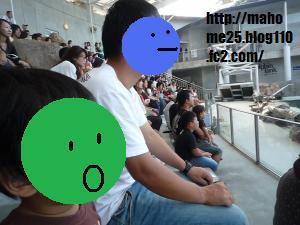 P1020325_convert_20090817004005.jpg
