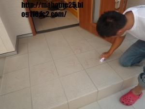 P1020407_convert_20090825145128.jpg