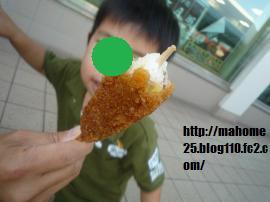 P1020433_convert_20090926233038.jpg