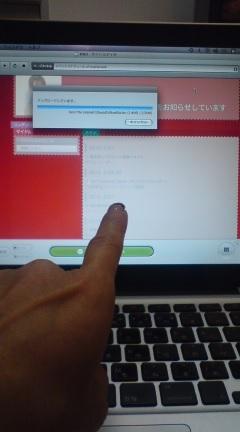 20100118181639.jpg