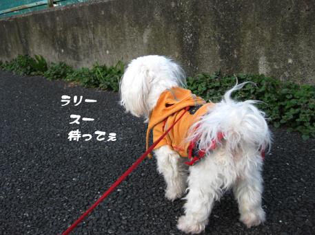 20090310-004.jpg