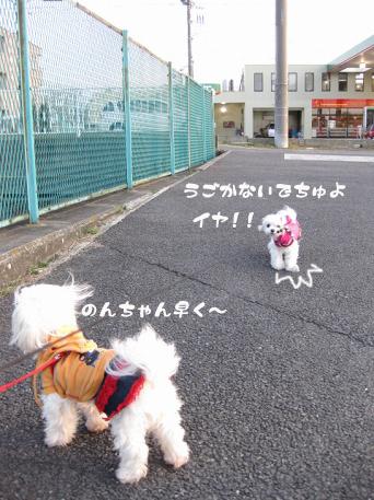 20090310-011.jpg