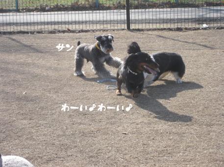 20090317-002.jpg