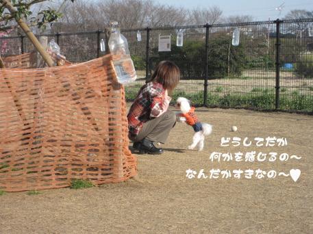 20090317-030.jpg