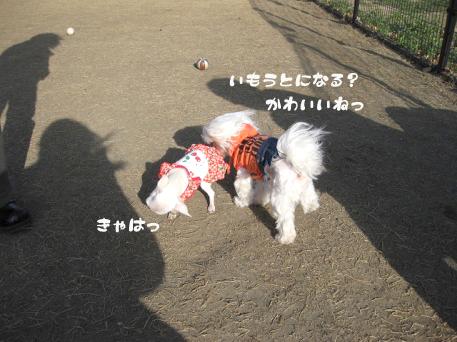 20090317-033.jpg