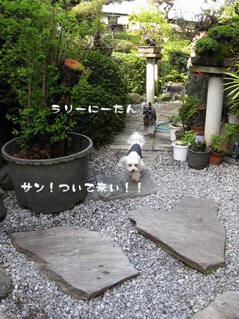 20090419-051.jpg