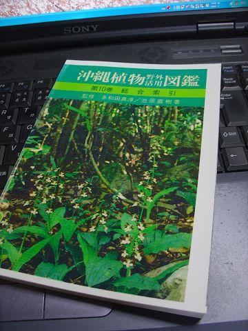 沖縄植物図鑑10