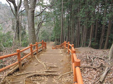 高尾山、稲荷山コース09.3.2-1