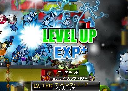 Maple10318a.jpg