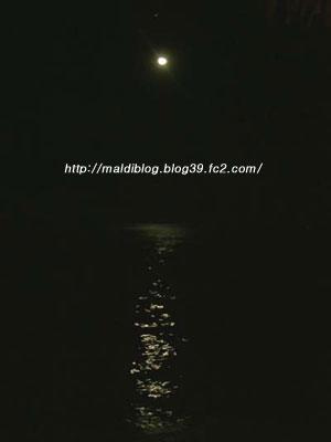 100_7491.jpg