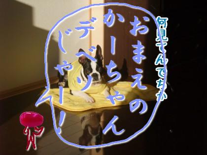 azukiroku4.jpeg