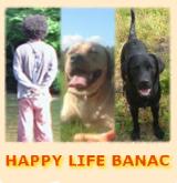 banac-banner5.jpeg