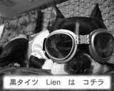 lien-3.jpg