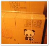 panda7.jpeg