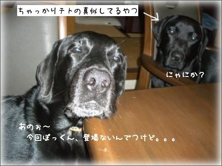 CIMG6708_2.jpg