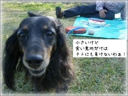 CIMG6996_3.jpg