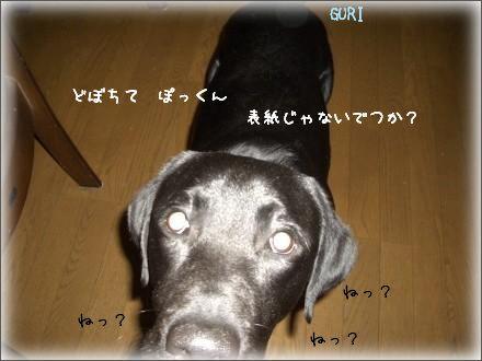 CIMG7013_2.jpg