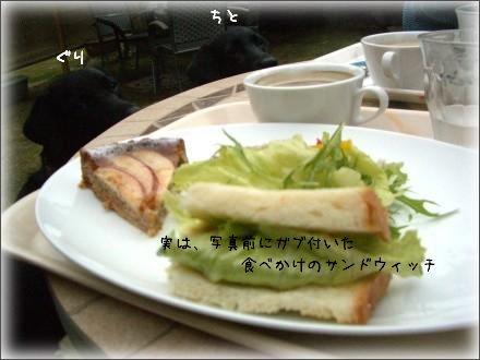 CIMG7361_2.jpg