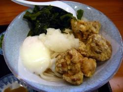 たぬき 麺 .
