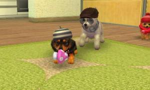 dogs0735.jpg