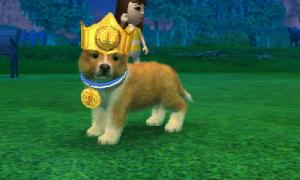 dogs0738.jpg