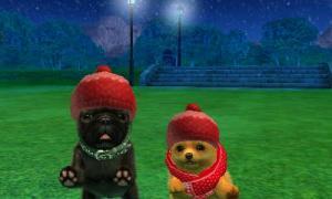 dogs0740.jpg
