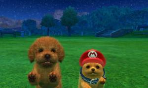 dogs0749.jpg