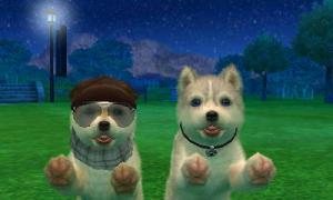 dogs0752.jpg